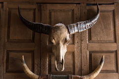 Thai Buffalo Skulll On The Wall Of A Wooden House Stock Photo