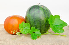 Thai cantaloupe melon and watermelon Stock Images