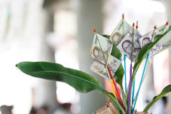 Thai cash on philanthropy Festival Royalty Free Stock Images
