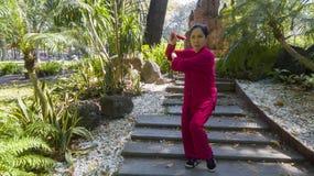 Tai Chi master royalty free stock image