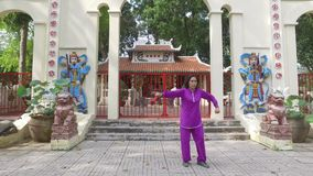 Tai Chi master. Woman practice Thai Chi in fron of the old shrine stock video footage