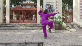 Tai Chi master. Woman practice Thai Chi in front of the old shrine stock video
