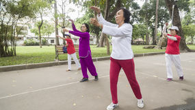 Tai Chi practice. Women practice Thai Chi iat the city park in Ho Chi Minh royalty free stock image