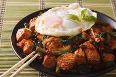 Thai chicken with basil and egg close-up on a plate. horizontal Royalty Free Stock Image