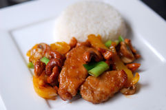 Thai chicken with cashew nuts Stock Images