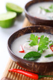 Thai chicken and coconut milk soup Royalty Free Stock Photos