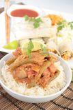 Thai chicken curry and spring rolls Royalty Free Stock Photo