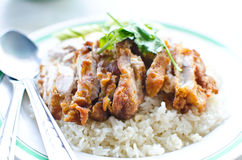 Thai chicken food with rice. Stock Photo