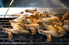 Thai chicken grill Royalty Free Stock Image