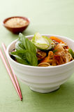 Thai chicken and noodle salad Stock Photo