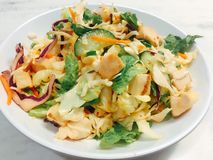 Free Thai Chicken Salad Dish Royalty Free Stock Photo - 89670325