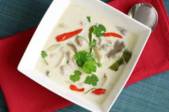 Thai chicken soup with coconut milk Royalty Free Stock Photo