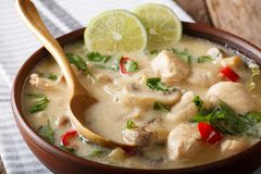 Free Thai Chicken Soup Tom Kha Gai With Coconut Milk Close-up In A Bo Royalty Free Stock Photography - 112955907