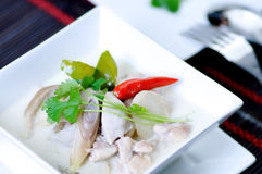 Free Thai Chicken Soup With Coconut Milk Stock Photography - 12100412