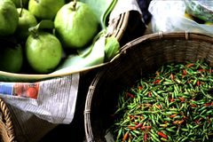 thai chilies Royaltyfri Bild