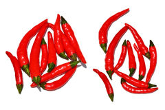 thai chilies royaltyfri fotografi