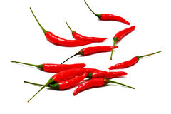 Thai chilies Stock Image