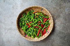 Thai chilli pepper Stock Photography