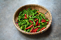 Thai chilli pepper Royalty Free Stock Image
