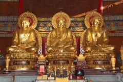 Thai China Buddha Image Royalty Free Stock Photography