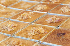 Thai coconut custard squares, Khanom Maw Kaeng, Thai tradition d Stock Image