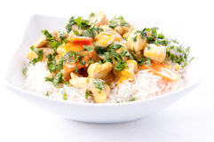 Thai coconut and mango curry with diced chicken and sliced carro Stock Images