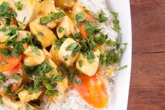 Thai coconut and mango curry with diced chicken Royalty Free Stock Photo