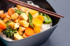 Thai coconut and mango curry Royalty Free Stock Images