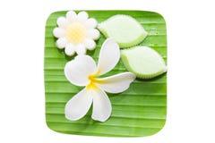 Thai coconut milk jellywuun kathi;thai Stock Image