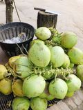 Thai Coconut street market vendor selling fruit royalty free stock photography