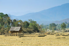 Thai countryside home Royalty Free Stock Photo