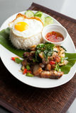 Thai Crispy Pork with Fried Egg Royalty Free Stock Image