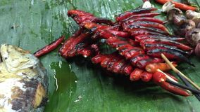Thai cuisine, grilled spicies and fishes. Thai cuisine, grilled spicies: red peppers, purple onions with fishes stock footage