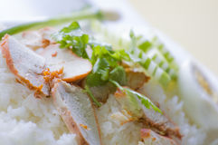Thai Cuisine Red Pork Over Rice With Boiled Egg Royalty Free Stock Photos