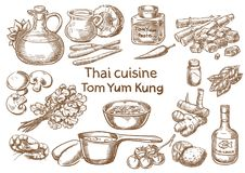 Thai cuisine. Tom yum kung  ingredients. Vector sketch Stock Images
