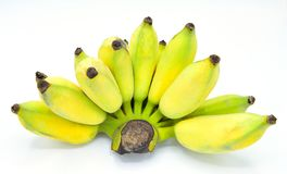 Thai Cultivated banana isolated on the white background royalty free stock photography