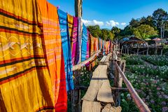 Thai cultural cotton fabric hanging along wooden bridge crossing flower field royalty free stock image