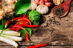 Thai Herbs to Curry Paste. NO.02 royalty free stock images