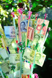 Thai Currency. Thai Baht money tree blessing at wachirathan waterfall in Chiang Mai Thailand Royalty Free Stock Photos