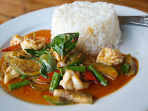 thai curryskaldjur Arkivfoton