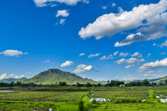 Thai Dam Cultural Village with landscape rice field mountain in Chiang Khan at Loei, Thailand. Thai Dam people migrated from Chiang Khwang Town, Laos in 1905 to royalty free stock photo