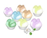 Culorful Thai Steamed Cupcake on White Background Royalty Free Stock Photos