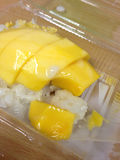 Thai dessert, Mango with sticky rice Royalty Free Stock Photo
