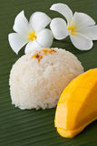 Thai dessert sweet sticky rice with mango. Thai popular dessert  sweet sticky rice with mango coconut milk topping with coconut milk Stock Photography