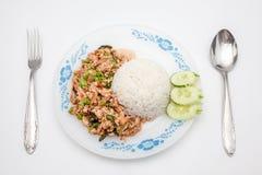 Thai dish, pat kapow Stock Image