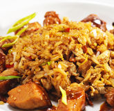 Thai Dishes - Pork with Rice Stock Image