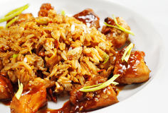 Thai Dishes - Pork with RIce Royalty Free Stock Photos