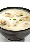 Thai Dishes - Soup with Coco Milk Royalty Free Stock Photography