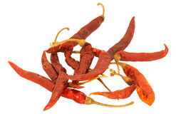 Thai Dried Chilli. Dried Chilli from the northern of Thailand - It's good for Somtum (papaya salad Stock Photography