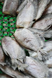 Thai Dried Salted Fish - Snakeskin gourami Stock Images